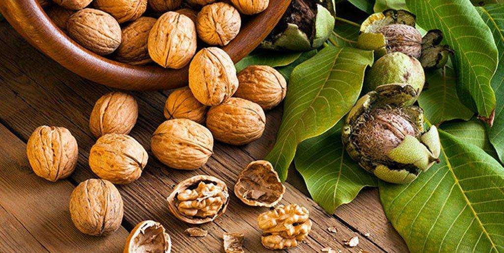تنها 1 گرم از این خوراکی ها می تواند طول عمر شما را بالاتر ببرد !